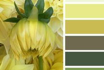 Blog Design- Color Palates