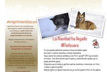 Revistas/ Magazines / Revistas que iré publicando en diferentes  magazines from our Adopt Pets