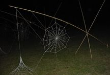 Mittagong Webs / Web installation at Mittagong Textile Forums.