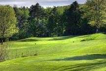 Barrie Area Golf Courses