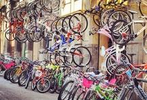 Bikes / by ilkay orbey