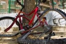 Biking news