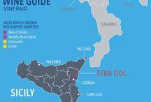 Italia | Wine | Est! Est!! Est!!!