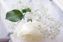 White colour shade