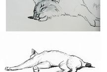 animals/critters