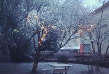 Snow & fairy lights / Beautiful winter