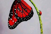 papillons / papillons