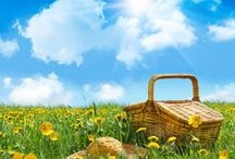 The Seasons:Summer