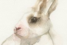 grafiki królik zając rabbit