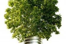 Ecological ideas