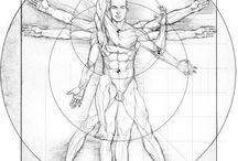 ANATOMY FOR ARTIST / BOARD DESIGNED FOR THE TEACHING OF HUMAN ANATOMY FOR ARTISTS AND DRAFTSMEN