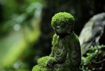 Buddha And Jizo / Meditation and Protection