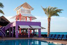 My Divi & Tamarijn Aruba Vacation / by Nicole Stone