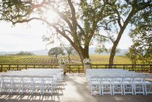 Uncork B.R. Cohn / Located in Sonoma Valley, our winery partner B.R. Cohn harvests grapes in conditions for maturing Cabernet Sauvignon to the perfect ripeness. Learn more about the winery, and the gorgeous scenery of the Olive Hill Estate.
