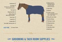 Horse Training <3