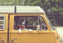 On The Road / Hound-inspired travels. www.scotchandhound.com