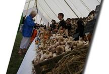 Isle of Wight Garlic Festival
