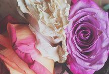 Feminine Florals