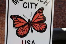 Monarch City USA