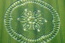 Crop Circles / 90% of all Crop Circles are located in southern England. They are appear near roads, areas of medium to dense population, and cultural heritage monuments, such as Stonehenge...