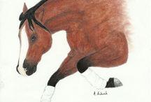 Horses in Art