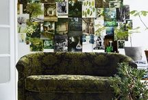 Pinteriors - Living Room / by Anna Weiss