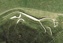 Equus / by John Paul Thurlow