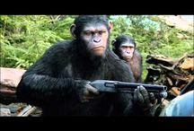 ~VOIR~ Regarder ou Télécharger La Planète des singes Streaming Film en Entier VF Gratuit