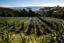 Winery News