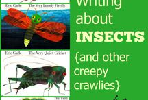 Insects / by Kori Batten