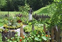 Potager Gardens / A potager garden is a French term for an ornamental vegetable or kitchen garden. The idea is that you incorporate ornamental/beautiful with functional.