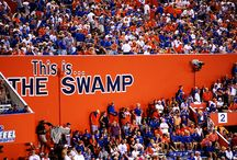 Florida Gators / The Florida Gators board / by Brian Milson