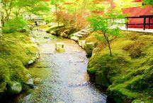 beautiful scenery*.*
