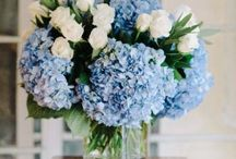 BloomNation Beyond / Arrangements from premier florists across the country. Perfect for corporate gifting, home and office decor