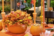 Fall / Pumpkins / Thanksgiving / Decor • Centerpiece Ideas • Tablescapes • Linens • Thanksgiving Food and Drink Recipes  / by Barb Smith