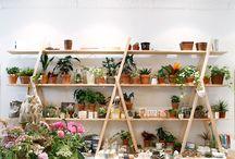 Flower Shop Interiors