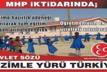 Bizimle Yürü Türkiye (MHP)