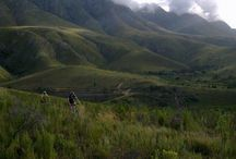 What Inspires Us / South Africa & Greyton / by The Post House Country House