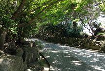 Kamakura 鎌倉文学館