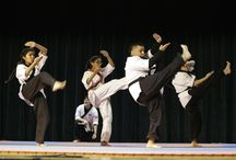 2015 Kickstart Kids Martial Arts Mania / The 2015 Kickstart Kids Martial Arts Mania Demo Team competition hosted by Stevenson Middle School brought some serious performances from our students!