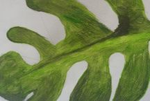 Plant Still Life Paintings / A board for the paintings, pictures, and drawings of plants and flowers done at Faux Arts