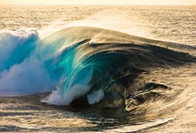 Oceans/Sandcastles/Seashells / by Debi Klaers