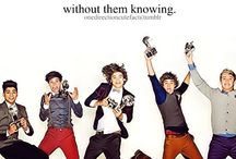 One Direction / by Olivia Brochman