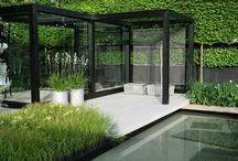Garden ideas, and nature