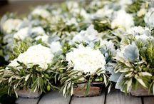 Wedding/Christening/Reception