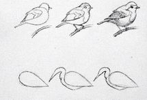 Madár rajzolás