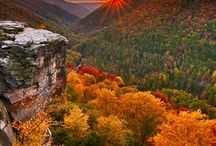 *''Stunning Nature