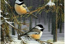 gyönyörű képek ♥️