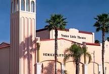 Venice Florida / by Cathy stringham