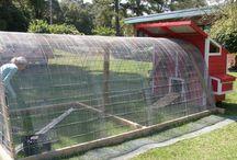 Farm ideas!